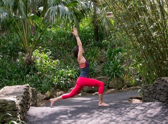 yoga-pose-utthita-ashwa-sanchalanasana