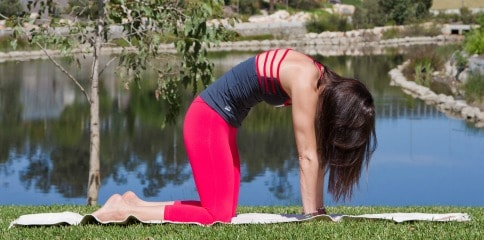 beginner-yoga-poses-marjaryasana