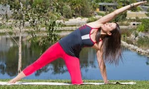 Yoga Poses; How to do Parighasana
